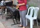 Malatya Aşktır - Ewin takus eze Herim ağzına sağlık Facebook