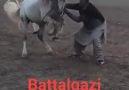 Malatyasporumuz yenince sultansuyu harasndaki atlarımız böyle halay çeker