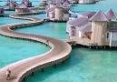 Maldives &lt3 &lt3 &lt3