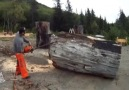Man Creates Wood Sculpture with Chainsaw
