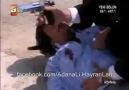 Maraz Ali - Adanalı Çatışmada