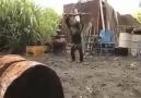 Maymunu delirttiniz lannn