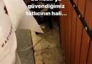 Mehmet Songut - Şu iğrençliğe bak hacı şerif bundan sonra...