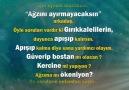 Mehmet Yılmazerin Yazı dizisi...Gırıggaleliler ne der Sen ne anlamalısın