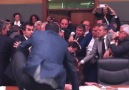 Messy brawl breaks out in Turkey's Parliament