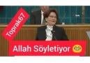 Metin Tabiloglu - Allah soylettiriyor