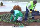 Mevsimlik Çiçeklerle Mutlu İnsanların... - Yeşilyurt Belediyesi
