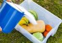 5-Minute Crafts - Easy tips for preserving food longer.