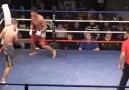 MMA Boss