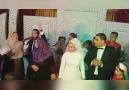 Mohamed Tarek -