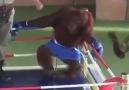 Monkey boxing..
