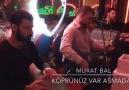Murat Bal - Köprünüz Var Asmadan