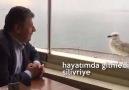 mustafa balbay ile martı sohbetleri