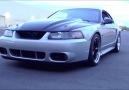 Mustang GT w/ F1R