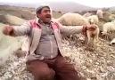 Mutlu olmayı bilmek. Çoban dayının deymeyin keyifne :)