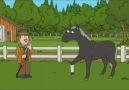 My Favorite Scene In Family Guy