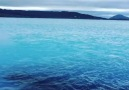 Myvatn Nature Bath in Iceland Video via @anikducf (Instagram)