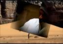 M.YVideo İslam