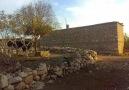 Narince Köyü