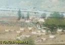 NASIL GÜLERİM - Eski Türküler Piribeyli