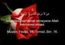 NEY EŞLİGİNDE 40 HADİS