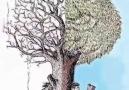 Nilay Toprak - okumak özgürleştirir..