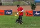 Ninja Dog and Owner