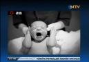 NTV O An