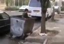 O gariban çocuğu çöp konteynerine atan... - Mavi Kocaeli Gazetesi