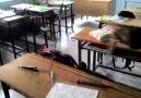 okulda katana:d