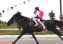Okullar açıldı Allah zihin açıklığı versin - Satılık Arap Atları