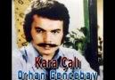 Orhan Gencebay - Kara Çalı - 1976