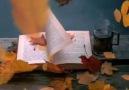 Öykü&Günler - &quotYapraklarımızı döküp Suçu sonbahara...