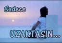OZAN - SENSİZ OLMUYOR