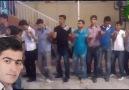 Öz Diyar-Hara Hara Zalımey