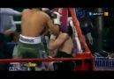 Pakistanlı boksör İsrailli boksöre karşı :)