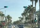 Palmiyeler Diyarı Mersin Güzel Bir Gün dileğiyle