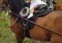 Para os amantes de cavalosesse vdeo j diz tudomuito lindo cavalo marchado