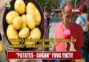 Patates - Soğan yuva yıktı!
