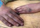 PATNOS - İnsanlık sevgi şefkat ve merhamet ile ayakta...