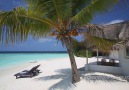 Perfect Beach Bungalow in Maldives
