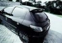 Peugeot 206 - Silver&Black