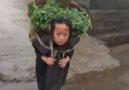 - Poor little girl little...