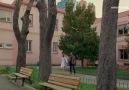 Poyraz Karayel Kanal D - Aşk bağımlısı Poyraz! Facebook