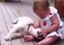 Puppy Cannot Contain His Excitement At Seeing Baby!