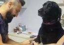 """&quotSoğukkanlı köpeğimiz gülümsetti"""" - Vicdan Hastanesi"""