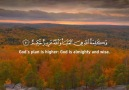 Quran translation - AYAT OF TRANQUILITY - SAKINAH