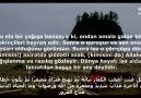 Quran v Biz - hdid 20 Facebook