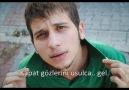 Radu - Kadife
