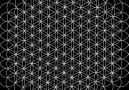 Resonance Science Foundation - The Unity of Geometry Facebook